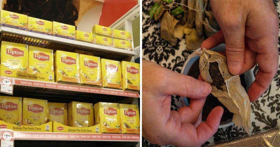 pestycydy w herbacie